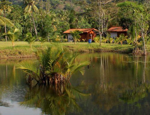 Season 1 – Iquitos